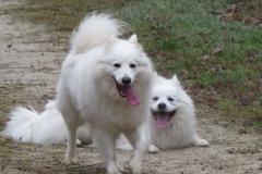 Ayla und Katchoen 2